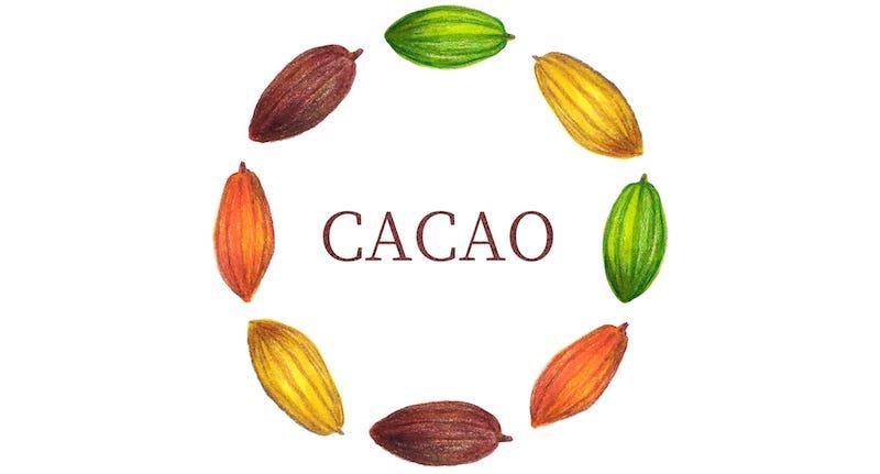 本当に健康に良いチョコレートを徹底解説