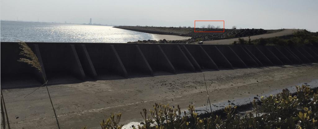 名古屋から近い海水浴場